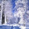 Красота зимних пейзажей с максимальной точносью
