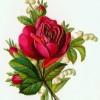 Как рисовать цветы поэтапно